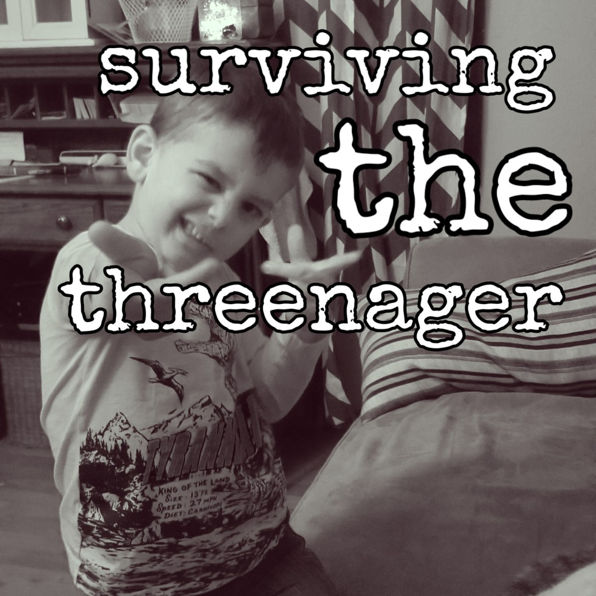 Surviving the Threenager