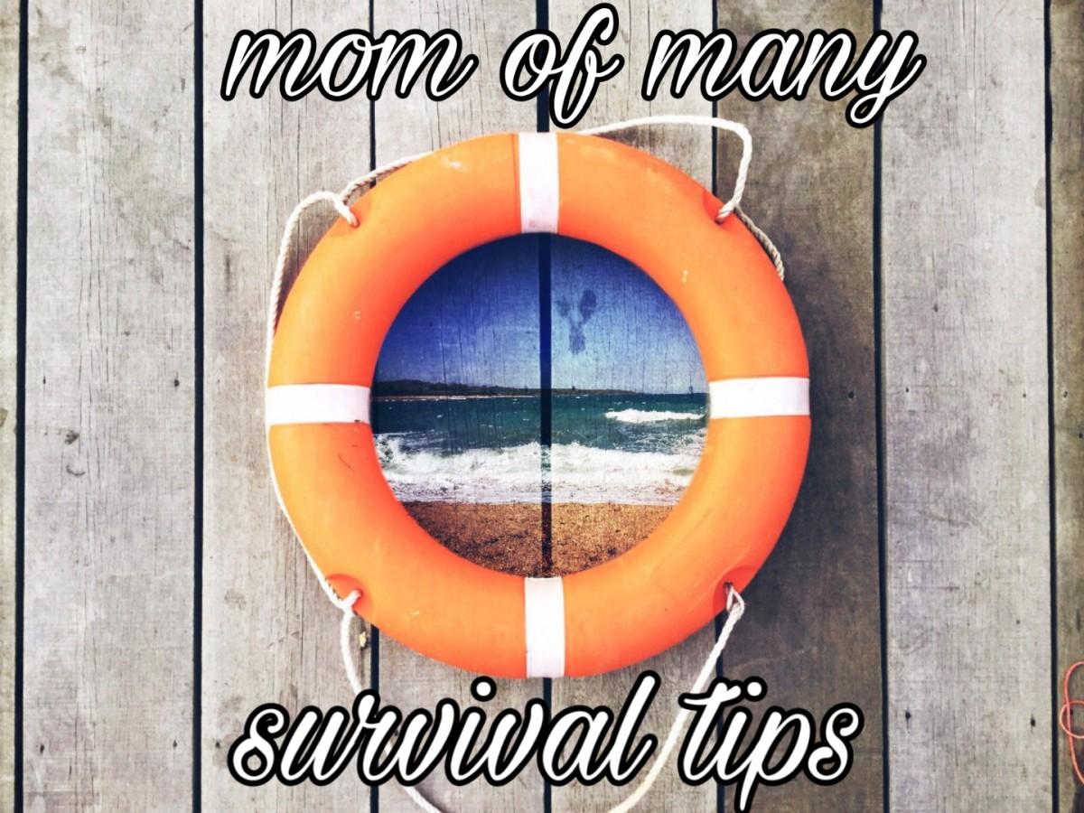 Mom of Many SurvivalTips